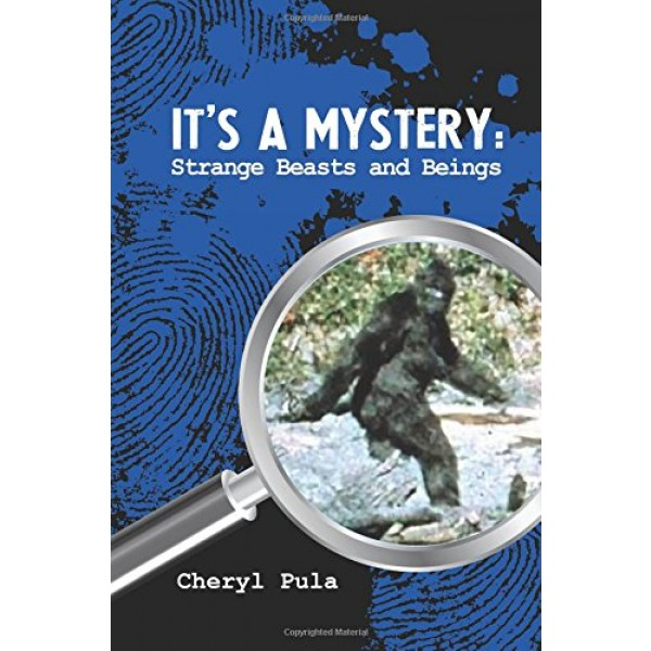 Mystery 4